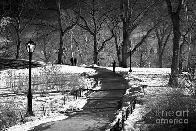 Photograph - Shadows In Central Park by John Rizzuto