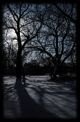 Shadows In January Snow Art Print