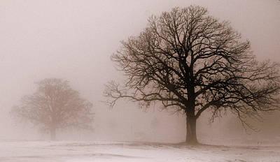 Shadows In The Fog Art Print by Linda Mishler
