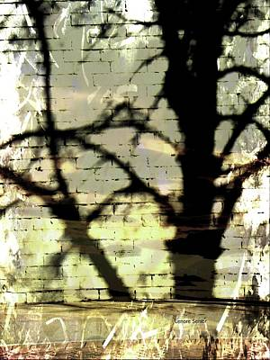 Photograph - Shadows In The Mist by Lenore Senior