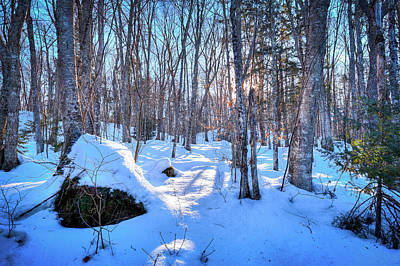 Adirondacks Photograph - Shadows In The Snow by David Patterson