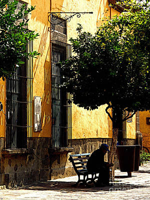 Tlaquepaque Photograph - Shady Bench by Mexicolors Art Photography