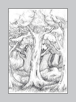 Drawing - Shady Forest Of Trees by Ruth Renshaw