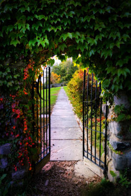 Impressionist Landscapes - Shady Garden entrance  by Lilia D