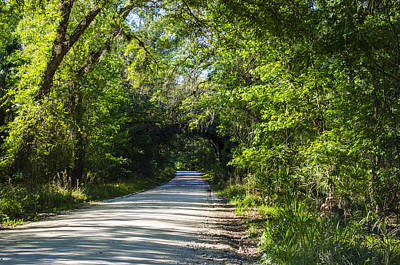 Photograph - Shady Lane In Ocklawaha by Deborah Smolinske