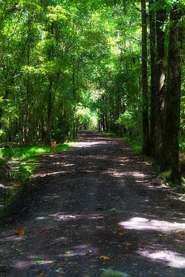 Light Rays Photograph - Shady Path - Charleston by J Darrell Hutto