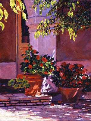 Shady Patio Original by David Lloyd Glover