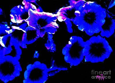 Photograph - Shady Purple Petunias by Marsha Heiken