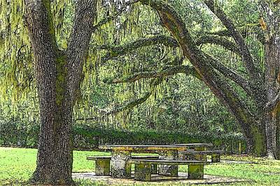 Woodscape Photograph - Shady Retreat by Sheri McLeroy
