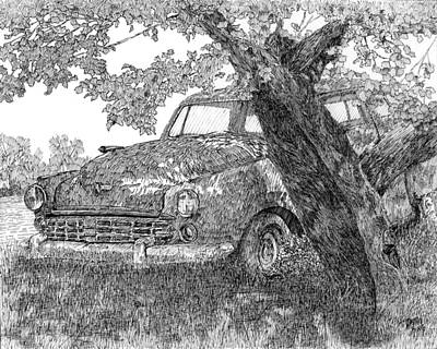 Drawing - Shady Stude Pen by David King