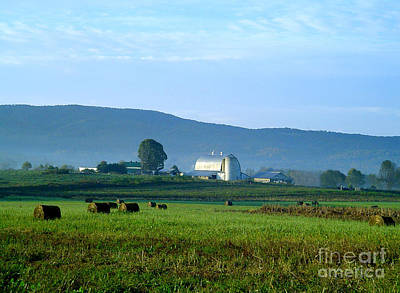 Shady Valley Farm Art Print