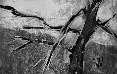 Digital Art - Shag Bark Hickory by Jim Vance