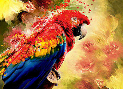 Macaw Mixed Media - Shake Shake Shake by Georgiana Romanovna