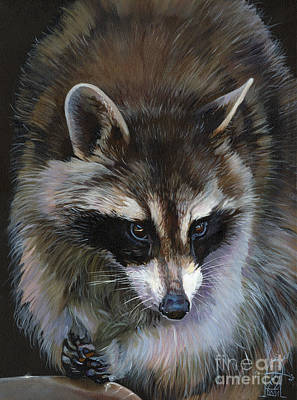 Raccoon Mixed Media - Shaken Not Stirred by J W Baker