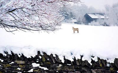 Photograph - Shaker Horse In Winter by Sam Davis Johnson
