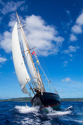 Photograph - Shalamar Classic Sailboat #2 by Karl Alexander