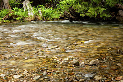 Photograph - Shallow Creek by Fran Riley