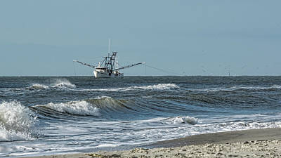 Photograph - Shallow Shrimpin' by Ed Waldrop