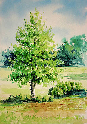 Shalom Park Watercolor Art Print by Linda Eades Blackburn