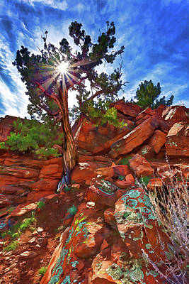 Digitally Manipulated Photograph - Shaman's Dome Juniper by ABeautifulSky Photography by Bill Caldwell