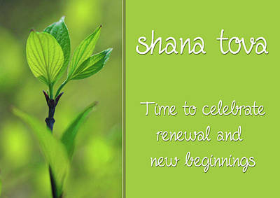 Photograph - Shana Tova New Beginnings Card by Denise Beverly