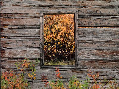 Photograph - Shane Cabin Window by Leland D Howard