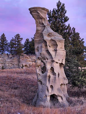 Photograph - Shapes Of Time In Sandstone by Leland D Howard