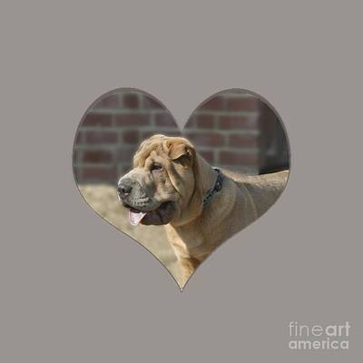 Photograph - Shar Pei Heart by Terri Waters