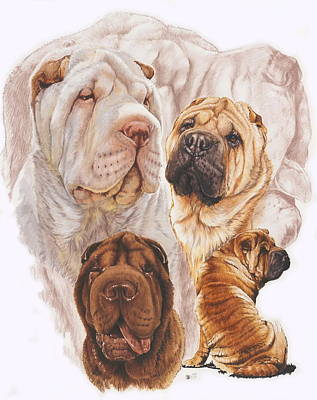 Sporting Mixed Media - Shar Pei W/ghost by Barbara Keith
