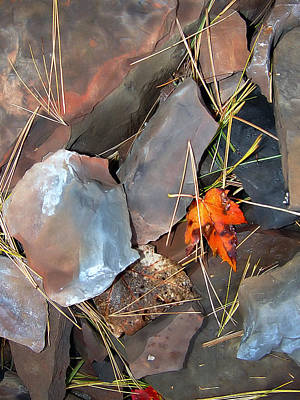 Photograph - Shards And Needles by Lynda Lehmann