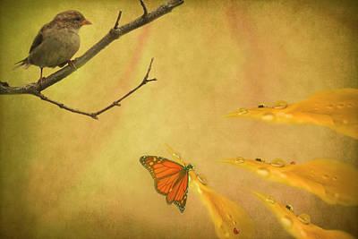Digital Art - Sharing The Light by Robin Webster