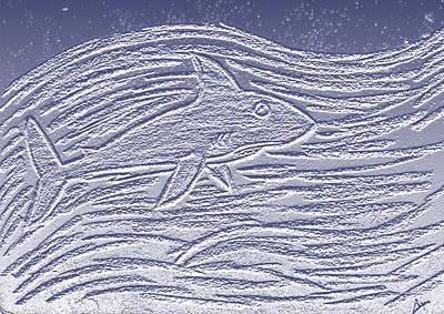Shark Original by Cassidy Haas