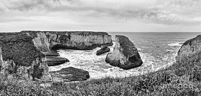 Ocean Vista Photograph - Shark Fin Cove Panorama by Jamie Pham
