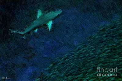 Photograph - Shark In The Dark by Blake Richards
