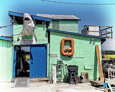 Photograph - Shark Shack by Alan Raasch