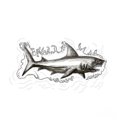 Shark Swimming Water Tattoo Art Print