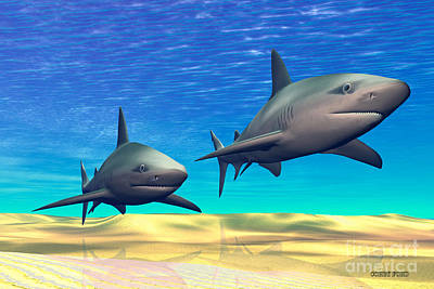 Sharks Art Print by Corey Ford