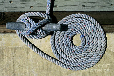 Photograph - Sharon Hudson Marine Abstract - Coiled Ropes by Sharon Hudson