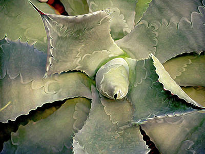 Photograph - Sharp Embrace 8 by Lynda Lehmann