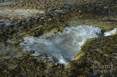 Photograph - Sharp Jagged Lava Rock With A Tidal Pool by DejaVu Designs