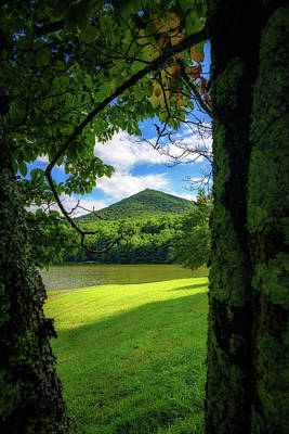 Photograph - Sharp Top Through The Trees by Steve Hurt