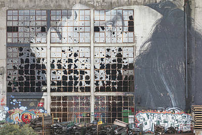 Photograph - Shattered Dreams by Howard Ferrier