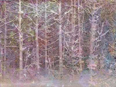 Linda Dunn Photograph - Shattered Forest by Linda Dunn