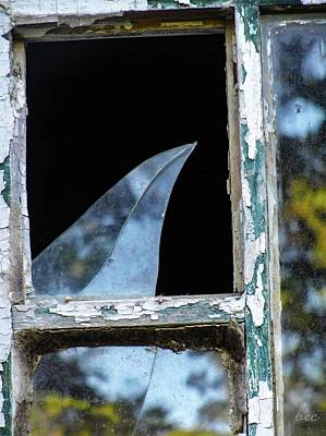 Photograph - Shattered Reflection by Bruce Carpenter
