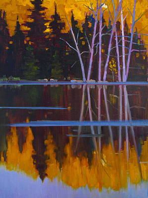 Shaw Lake Reflections Art Print by Susan McCullough