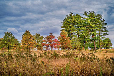 Photograph - Shaw Nature Reserve 7r2_dsc2560_10242017 by Greg Kluempers