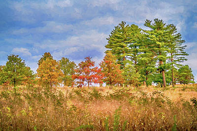 Photograph - Shaw Nature Reserve Photo Painting 7r2_dsc2560_10242017 by Greg Kluempers