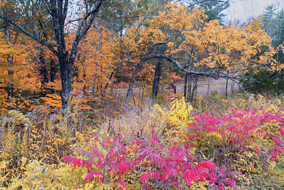 Photograph - Shaw Nature Reserve Sumac Photo Painting 7r2_dsc2591_10242017 by Greg Kluempers