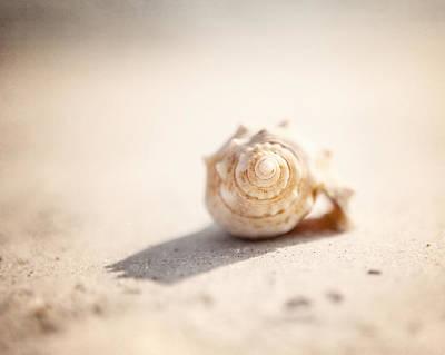 She Sells Sea Shells Art Print by Lisa Russo