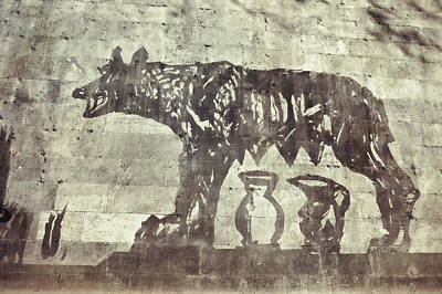 Photograph - She-wolf Along The Tiber by JAMART Photography